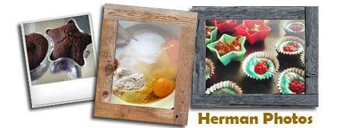 Herman Photos