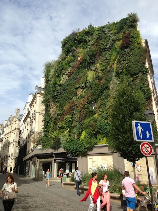 L'Oasis d'Aboukir par Mur Végétal Patrick Blanc • Ma Sérendipité