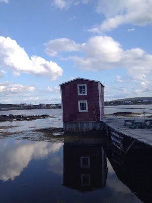 The Adventures of Kathryn: Why I Have Been MIA AKA Adventures on Fogo Island
