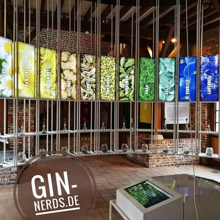 843 best Gin-Nerdsde images on Pinterest Bottle design, Liquor - küchenschranktüren einzeln kaufen