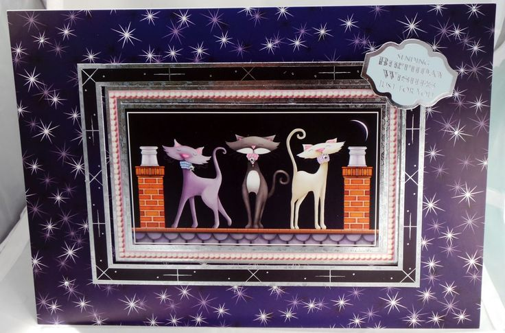 Cute kitten trio, on roof, greeting card
