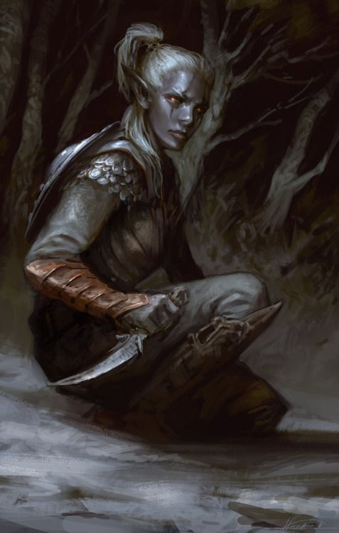 "third-law-of-thermodynamics: "" mystery-of-silence: "" Drow 2 - Forgotten Realms by Fesbraa "" @we-are-rogue """