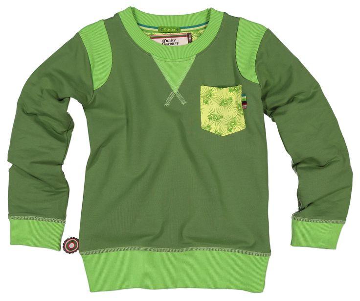 Groene jongens sweater What you wanted van het kinderkleding merk 4funkyflavours.  Dit is een groente sweater uit de reeks Desert Journey, dit is een effen groene sweater met een geel borstzakje met een print op. De sweater heeft een ronde hals.