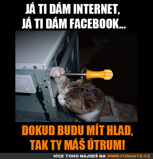 Já ti dám internet,…