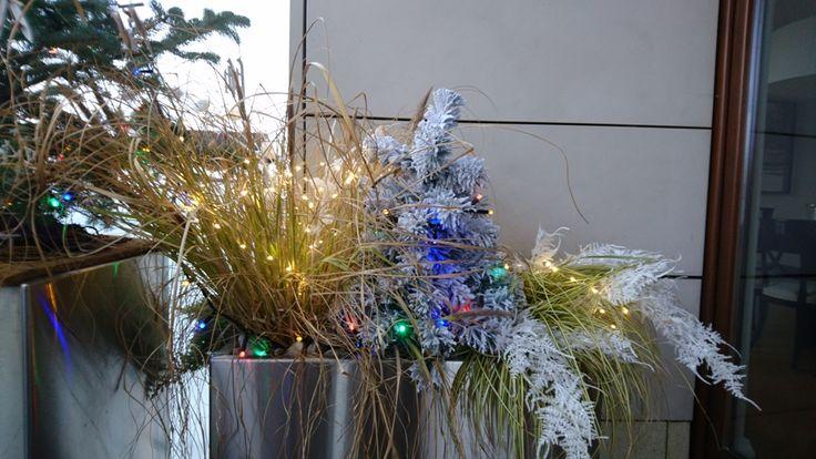 Świąteczne donice na tarasie