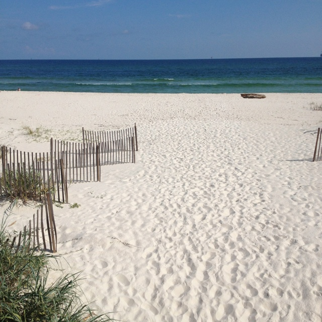Fort Morgan Beach Houses: 56 Best Images About Gulf Shores On Pinterest