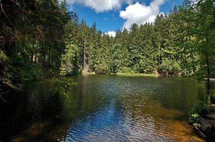 Boubínská stezka : K pralesu : K Boubínskému jezírku