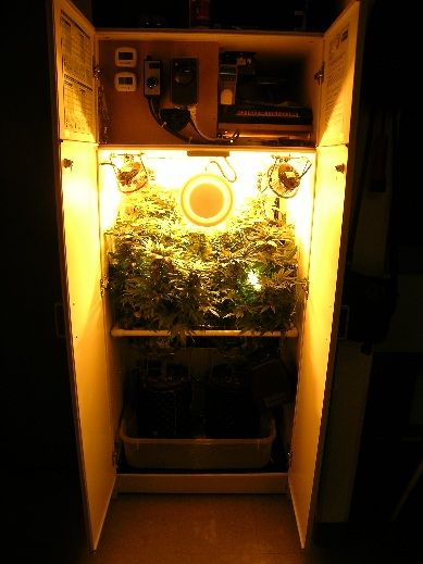 Ultra stealthy grow boxes!