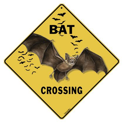 637fcf7a0c83abe8ac406bd4d92b331f--aluminum-signs-bats.jpg