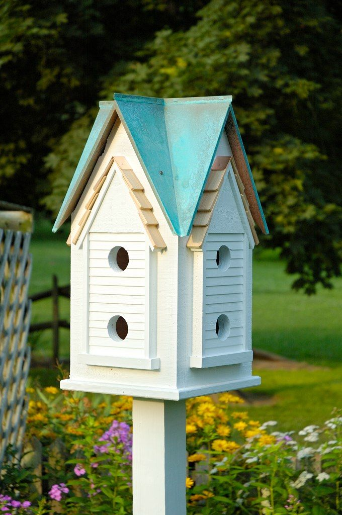 I absolutely love this Victorian Purple Martin bird house. Purple Martins eat mosquitoes, so that is a plus.