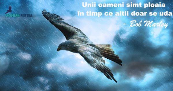 Unii oameni simt ploaia in timp ce altii doar se uda. – Bob Marley #bobmarley #rain #eagle #ploaie http://cristianfertea.ro/pastile-de-intelepciune/unii-oameni-simt-ploaia/