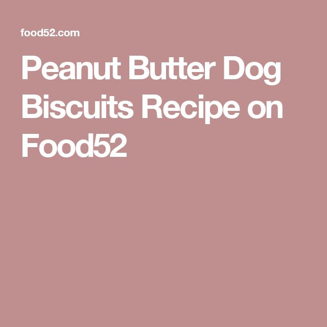 Peanut Butter Dog Biscuits Recipe on Food52