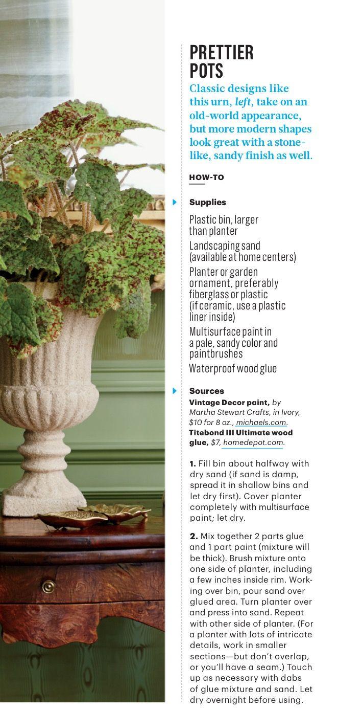 18 best Sedums images on Pinterest | Succulent plants, Succulents ...