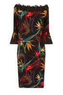 Womens **Paper Dolls Multi Coloured Lace Bardot Bodycon Dress- Multi Colour