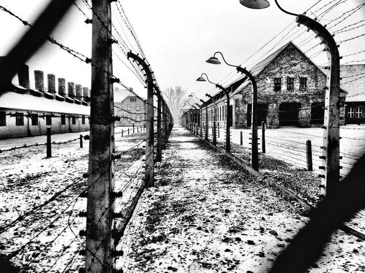 Auschwitz - Auschwitz