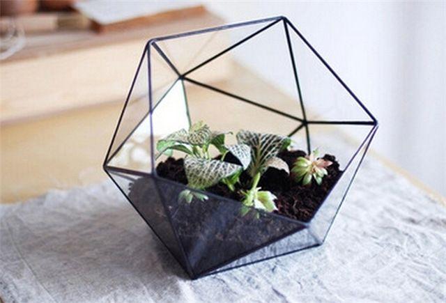 Миниатюрный сад в настольный стеклянные вазы, Ручной парниковых рабочего геометрические террариумы и кристалл ваза для цветов