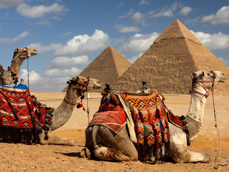 Egypt!  A camel ride to see the Great Pyrimids of Giza!