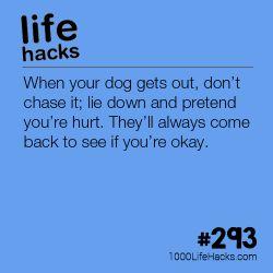 1000 Life hacks – More hacks at 1000lifehacks.com