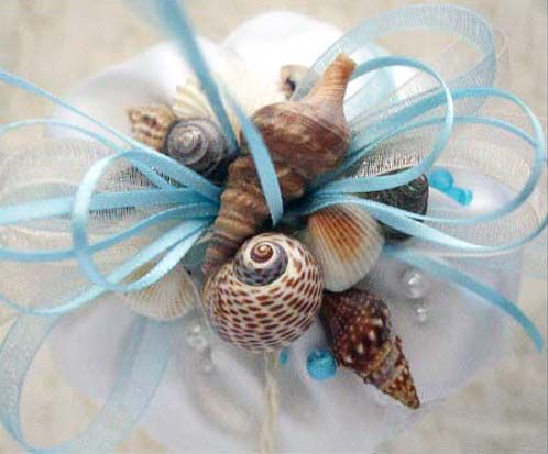 Great use of shells!