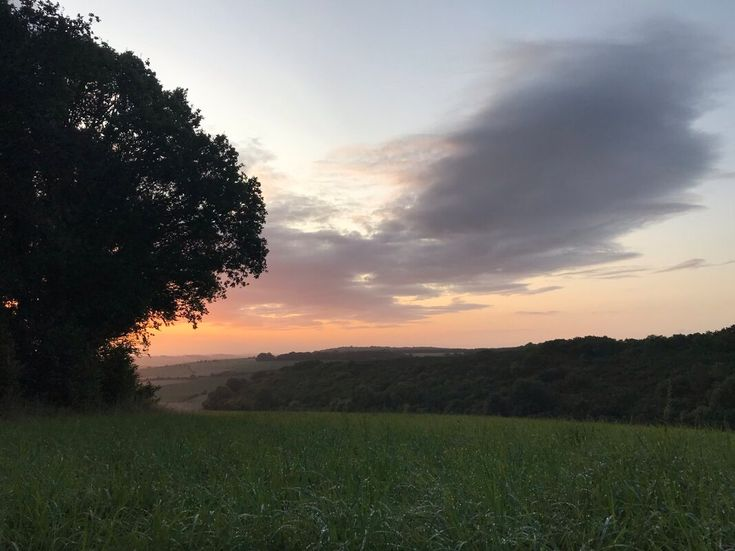 Wild camping spot, Wiltshire in 2020 | Camping spots ...