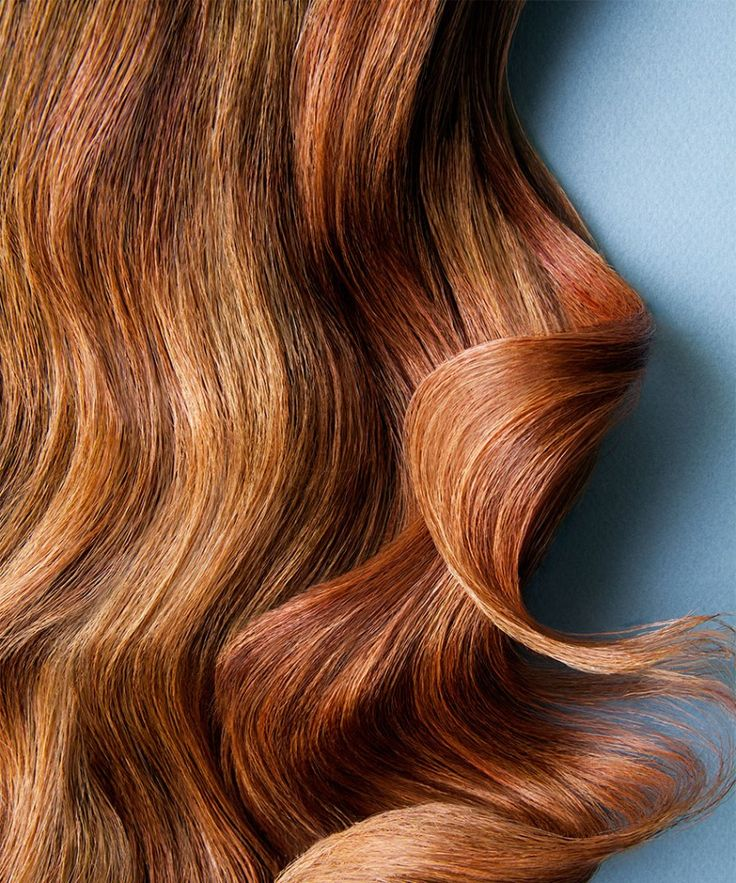 The search for a solution to dry, brittle hair ends with oil