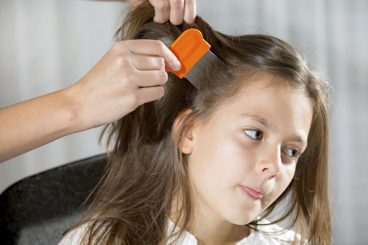 Eliminate Head Lice Safely With Anti-Lice Shampoos