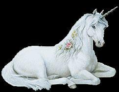 White Unicorn Animation