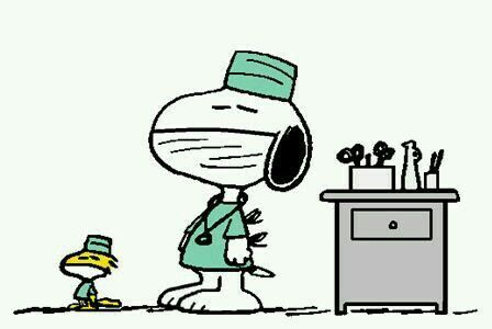 Drs Snoopy and Woodstock