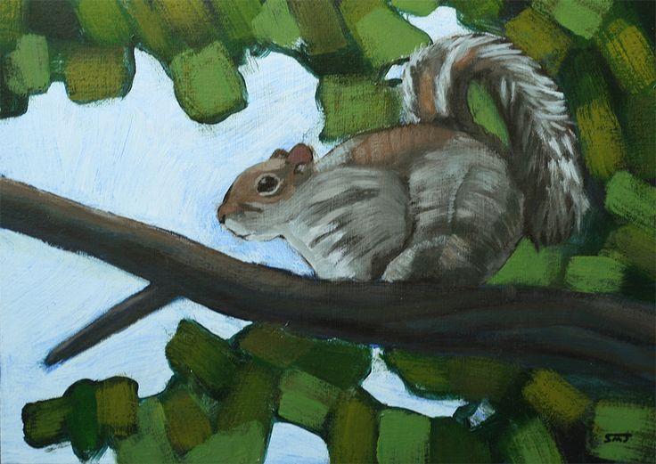 Squirrel by ShaunMichaelJones.deviantart.com on @DeviantArt