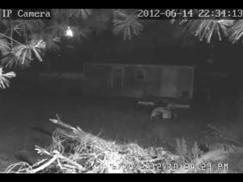 "Real Fairies I caught on my security camera! NOT FAKE! (5:18) - by RS Johnson | YouTube >> ""My husband just hooked up a security camera to the garage. I was checking the playback & saw this video. It appears to be a cat (bottom right tree limb) chasing fairies. At 1:17 you see one go across off to the right & at 1:24 you see one come right up the front middle. If you pause it you can really see it good."" << I saw this a year ago... and I was & I was amazed! :-)"