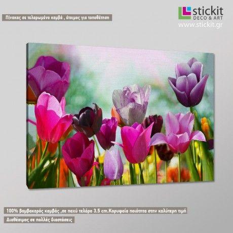 Beautifull spring tullips, πίνακας σε καμβά.Η μεγαλύτερη ποικιλία πινάκων σε καμβά στην καλύτερη τιμή.Έτοιμοι για τοποθέτηση.Xρώματα πιστοποιημένα για εσωτερικούς χώρους.