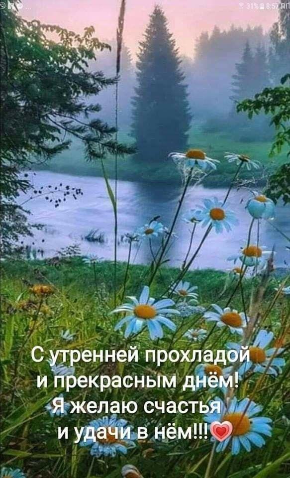 Картинки пожелания доброго утра счастья природа