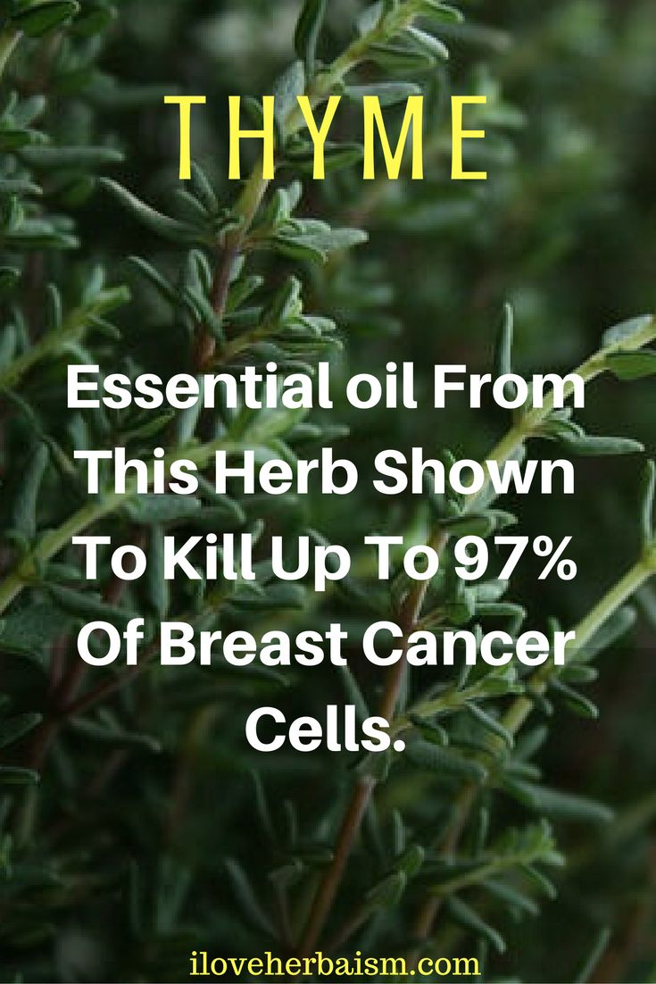 Thyme is native to the Mediterranean and was widely used by the ancient Greeks.   Thyme is a very large part in Mediterranean cooking. This might be the reason why Greek women have less than half the incidence of breast cancer compared to American women).