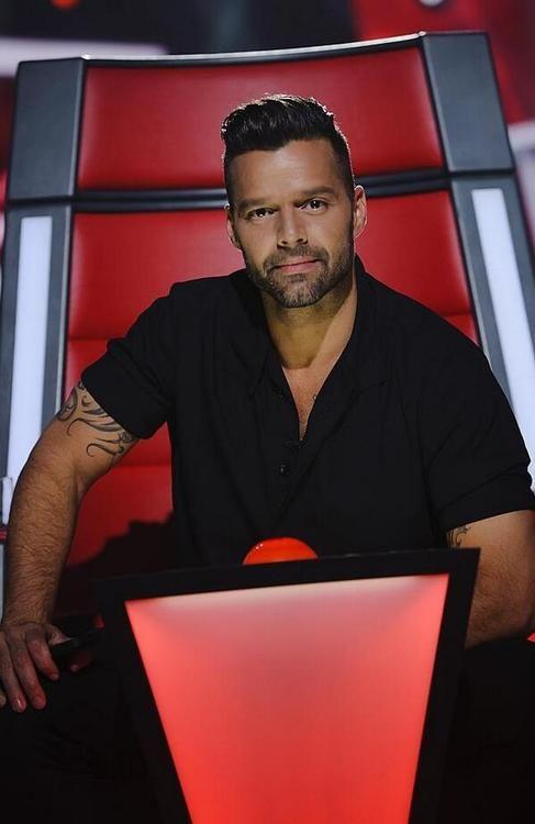Ricky Martin the voice australia