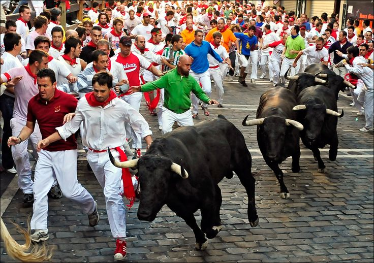 8. Running of The Bulls - Pamplona, Spain  The Running of the Bulls is a part of the famous San Fermin festival - a practice that involves running in front of a small group of bulls (typically a dozen) that have been let loose on a course of a sectioned-off subset of a town's streets.