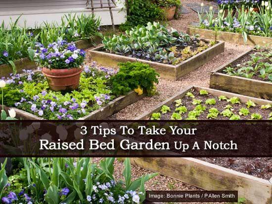 158 Best Garden Raised Images On Pinterest   Gardening, Raised Beds And Raised  Bed Gardens