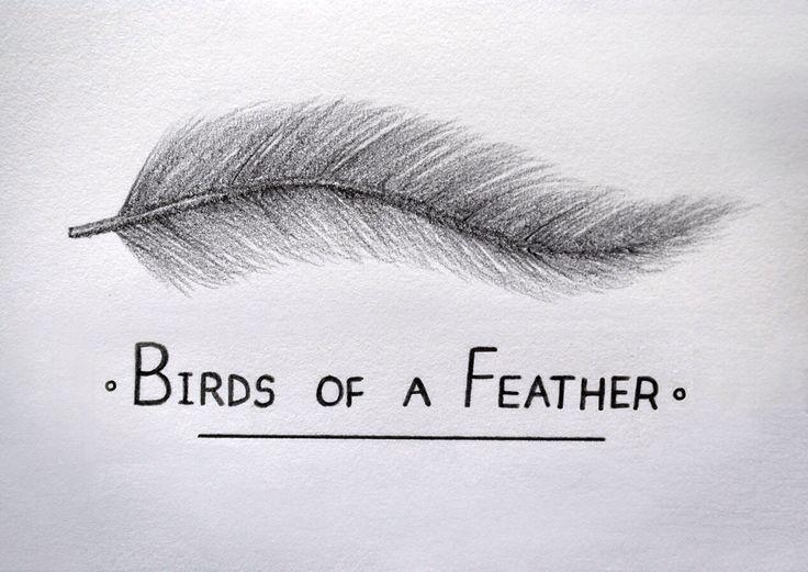 Birds of a Feather. #birds #feather #flocktogether #sketch #drawing #pencil #paper #sketchbook #illustration #design
