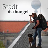 Stadtdschungel - Podcast mit Alexander Metzler und Andreas Kieling