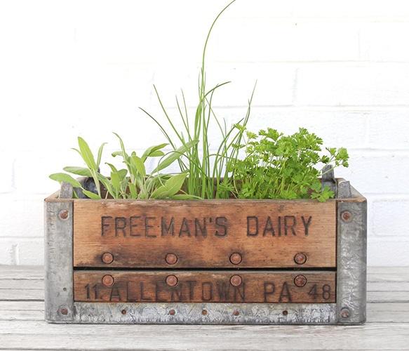 Crate planting: Indoor Herbs, Wood And Metals, Vintage Wood, Metals Dairy, Herbs Gardens, Dairy Crates, Wooden Crates, Wood Crates, Metals Crates