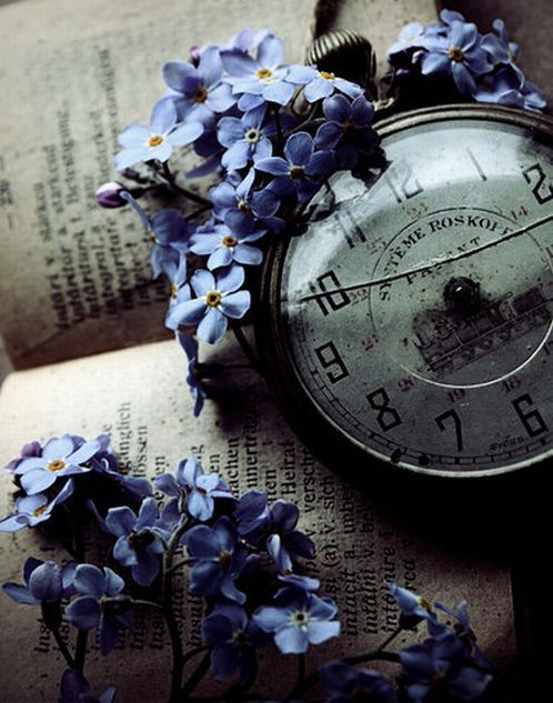 Vintage pocket watch framed with blue flowers and an antique book.