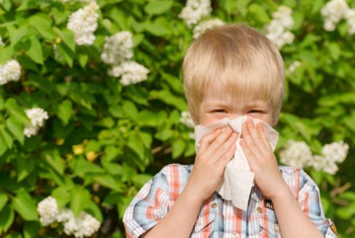 Natural Allergy Medicine for Kids