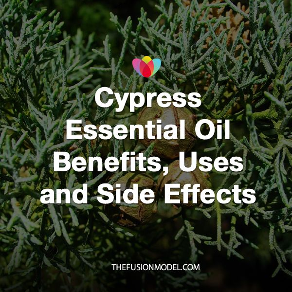 Cypress Essential Oil Benefits, Uses and Side Effects