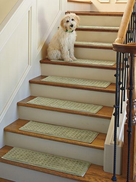 Best 41 Best Vista Rugs Stair Treads Images On Pinterest 400 x 300