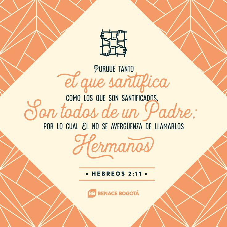 Porque tanto el que santifica como los que son santificados, son todos de un Padre; por lo cual El no se avergüenza de llamarlos hermanos. HEBREOS 2:11