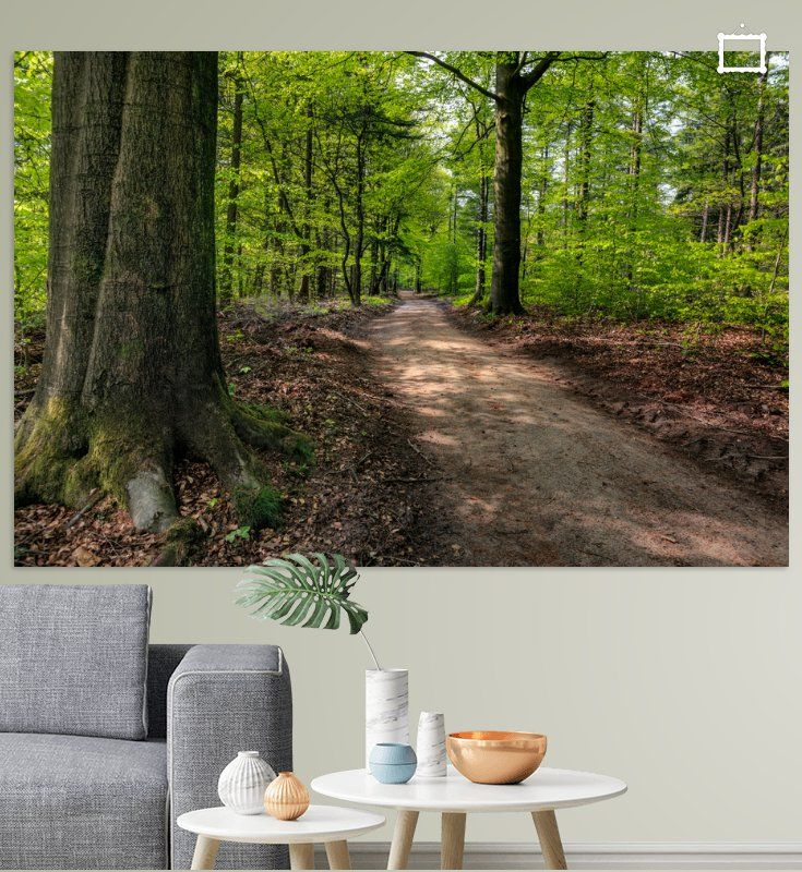 Prachtige foto's en digitale kunst voor aan de muur in huis of op kantoor. Het Speulderbos staat hoog genoteerd in de toptien van mooiste bossen in Nederland. In dit wilde woud kun je ronddwalen alsof het een echt oerwoud is. De natuur mag hier haar gang gaan. Glanzende sparren, knoestige, groenbemoste eiken, varens en halfvergane stammen zorgen voor een bijzondere sfeer.
