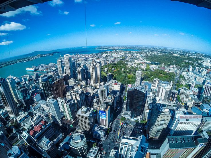 Those views! Auckland, New Zealand. Up the Sky Tower.