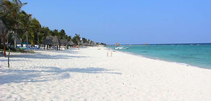 Akumal beaches. Half Moon Bay is recommended. 62 miles south of cancun; between play del carmen & tulum.
