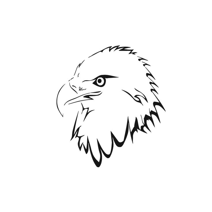 88 best eagles images on Pinterest | Pyrography, Animal drawings and ...