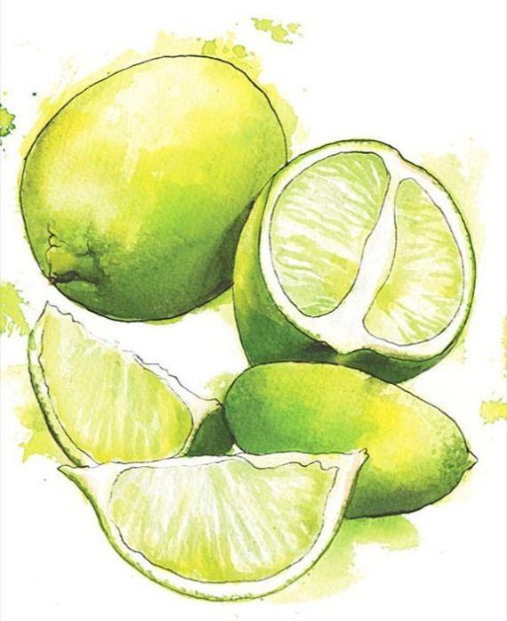 El Mix Verde Amarillo De Mesitas Del Colegio Acuarela De Fruta Alimentos En Acuarela Pintura De Fruta