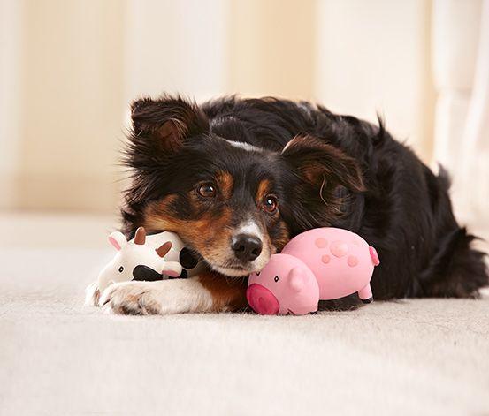 Die gebe ich nicht mehr her: #Hunde-Spieltiere mit #Quietschfunktion für €9,95 bei #Tchibo